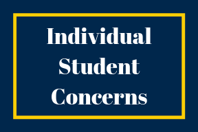 Individual Student Concerns